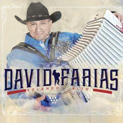 davidfarias-volandoalto