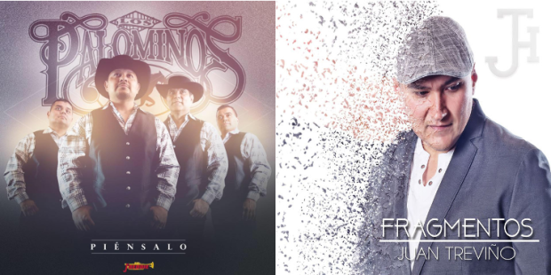 palominos-jtrevino-featured